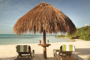 Hyatt Ziva Cancun (27 of 42)