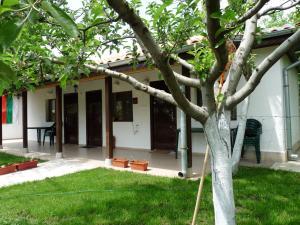Guest House Ivanovi