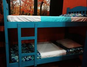 Xua Hostel Santos, Bed & Breakfasts  Santos - big - 8