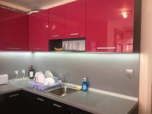 Stylish spacious flat - Apartment - Sofia