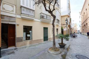 Apartamento CIGARRERAS de Cadiz, Ferienwohnungen  Cádiz - big - 32