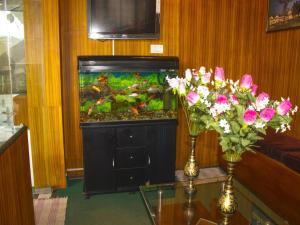 OYO 3217 Kurinji Residency, Hotels  Ooty - big - 17