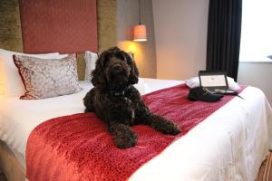 The Gonville Hotel (9 of 96)