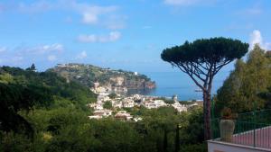 Hotel Terme La Pergola, Hotely  Ischia - big - 26