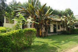 Uganda Lodge