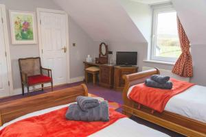 Fiuise B&B, Bed and Breakfasts  Dingle - big - 43