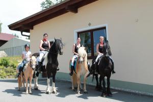 Landgasthof Riedl, Hotels  Hohenau - big - 13