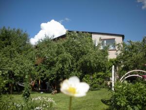Rasas, Guest houses  Sigulda - big - 26
