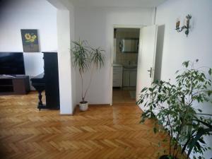 Apartament Turystyczny w Stepnicy