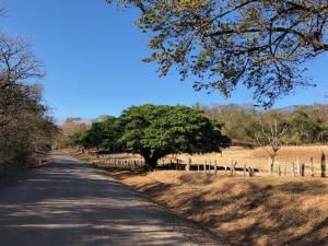 Villas Onda del Bosque, Dovolenkové domy  Santa Rosa - big - 14