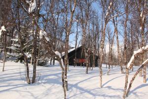 Polar Cabin - Movik