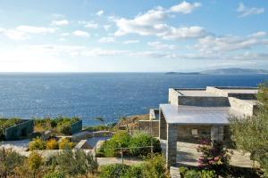 Sea Bird Andros Greece