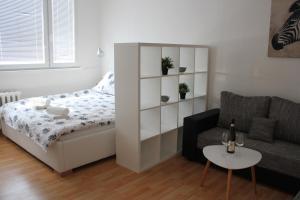 Viktorie - Apartment - Frýdek-Místek