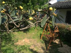 Pure-Land Villa, Privatzimmer  Suzhou - big - 56
