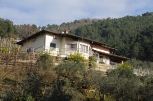 obrázek - Villa La Selvaccia
