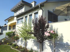 Appartementhaus Elfi - Apartment - Barnbach