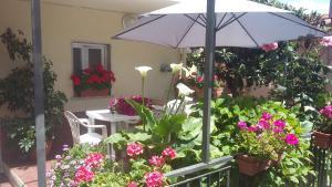 Appartamento il Carugio - AbcAlberghi.com