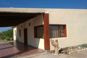 Apapachar, Prázdninové domy  Amaichá del Valle - big - 3