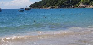 IDP204- APARTAMENTO DE 2 DORMITORIOS NO INGLESES, Ferienwohnungen  Florianópolis - big - 72