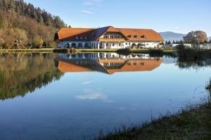 Pension Pirkdorfer See - Hotel - Sankt Michael ob Bleiburg