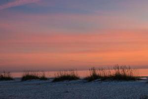 Sunset Beach 204, Ferienhäuser  Ilexhurst - big - 44