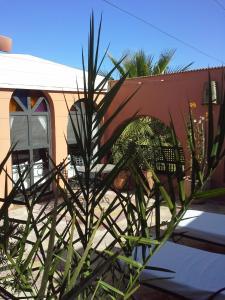Riad Maison Arabo-Andalouse photos