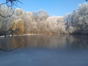 Rybvelvet, Prázdninové domy  Skořenice - big - 163