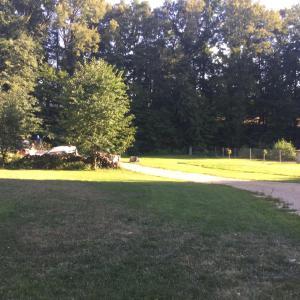 Rybvelvet, Prázdninové domy  Skořenice - big - 136