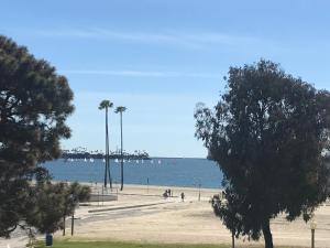 obrázek - Ocean air Belmont shore