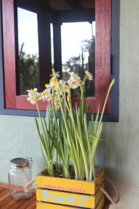 Jamanota happy view, Apartmány  Boton - big - 11
