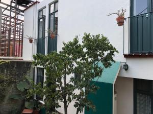 Meson del Penasco, Apartmány  Oaxaca City - big - 24