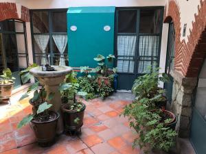 Meson del Penasco, Apartmány  Oaxaca City - big - 29