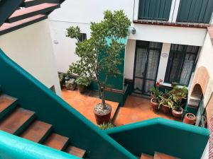Meson del Penasco, Apartmány  Oaxaca City - big - 37