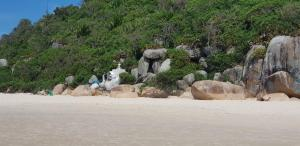 IDP204- APARTAMENTO DE 2 DORMITORIOS NO INGLESES, Ferienwohnungen  Florianópolis - big - 53