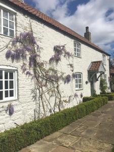 obrázek - Garden Cottage