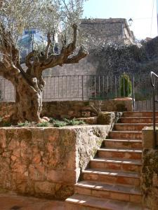 Accommodation in Community of Madrid