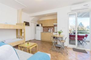 Apartment Branka