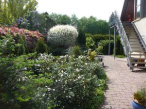 4_Zimmer_Ferienwohnung - Adelheidsdorf