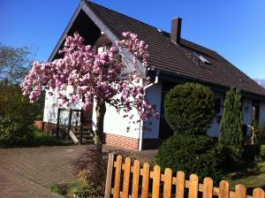 Apartment Am Haselborn - Dannenbüttel