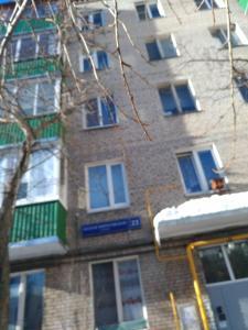 Apartment on Malaya Pirogovskaya 23, Ferienwohnungen  Moskau - big - 99