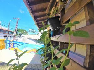 About Floripa Hostel, Hostelek  Florianópolis - big - 15