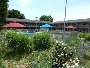 White Rose Motel - Accommodation - Hershey