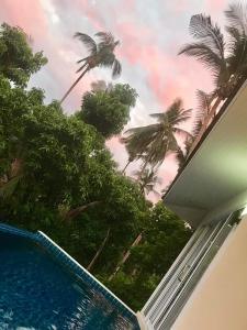 obrázek - Mango villa