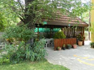 Thamalakane guest house, Affittacamere  Maun - big - 1
