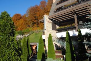 Casa Freya - Hotel - Busteni