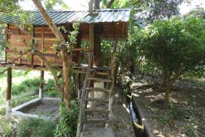 Hostels e Albergues - Hornbill Machan