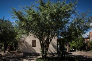 Apapachar, Prázdninové domy  Amaichá del Valle - big - 31