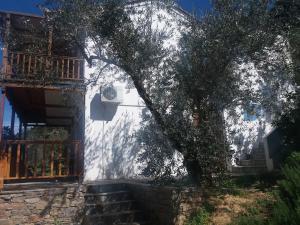 Megalos Mourtias Alonissos Greece