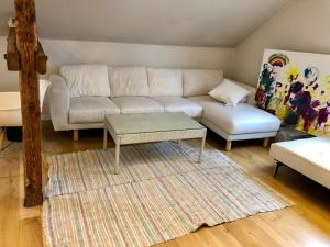 Demark Luxury House Apartment