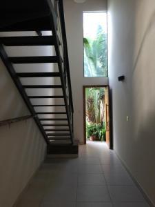 Madre Natura, Apartments  Asuncion - big - 222